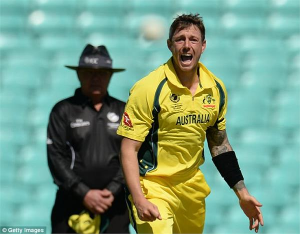 australia banned fast bowler pattinson for one match