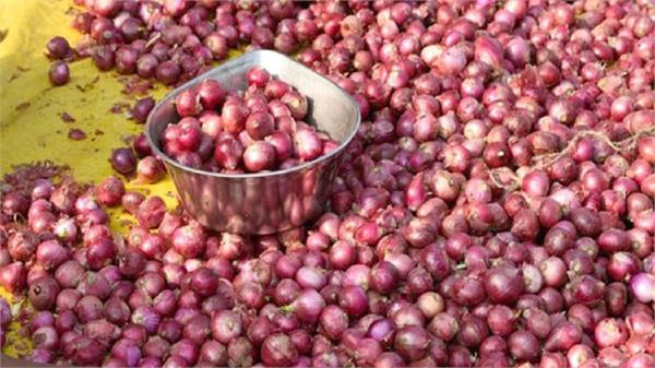 onion prices increased