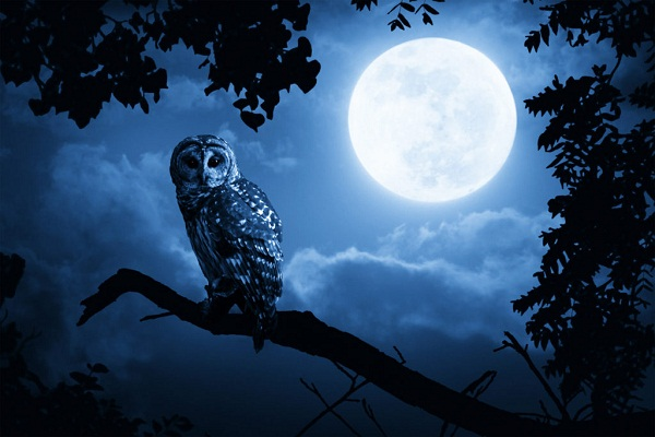 after 76 years  there will be visions of blue moon