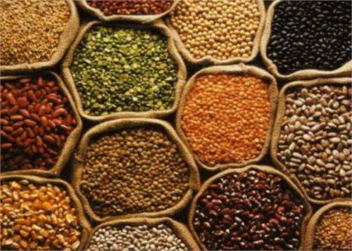 central government migrants free grain june 15