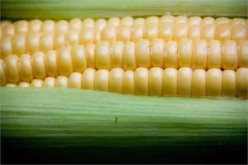 corns body  benefits
