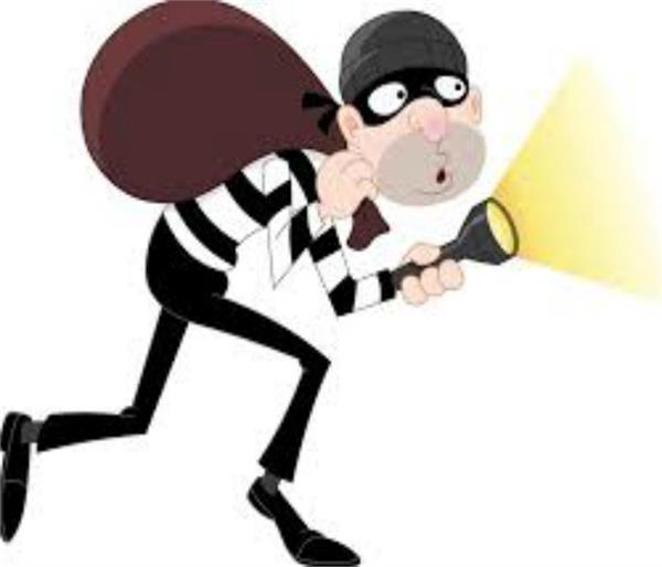 thieves  videos  social media