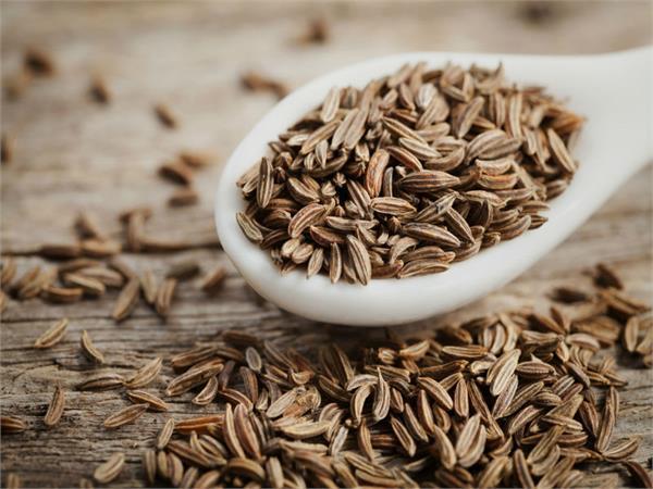 cumin seeds the many
