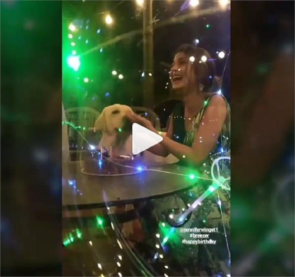 Video : ਜੈਨੀਫਰ ਵਿੰਗੇਟ ਦੇ ਪ੍ਰਸ਼ੰਸਕਾਂ ਲਈ ਖੁਸ਼ਖਬਰੀ, ਮੁੜ ਲਵੇਗੀ ਸੱਤ ਫੇਰੇ
