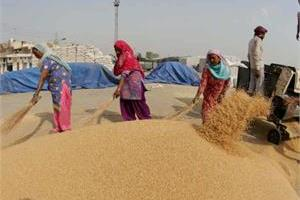 india  s wheat sack of 4 thousand m travels to kabul