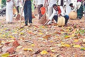 cleanliness campaign   can be a boon for employment