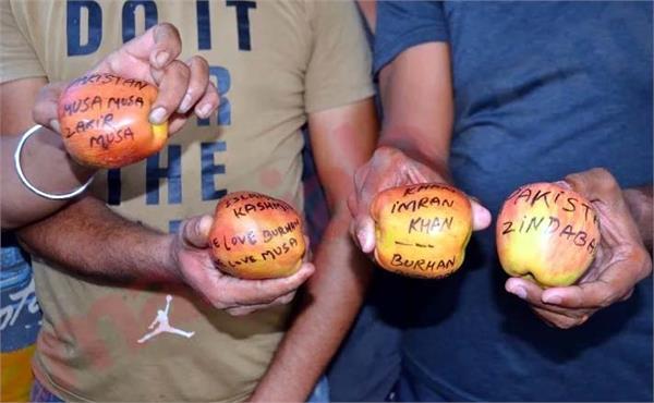 pakistan zindabad written on apple