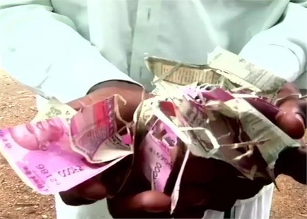 tamil nadu farmers crops rats notes