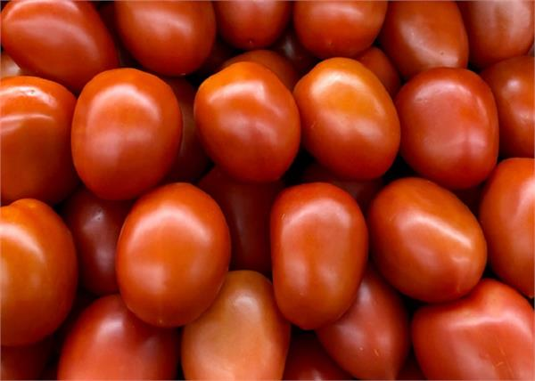 tomatoes are now 80 rupees kg in delhi