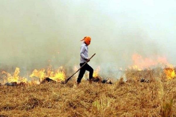 sangat mandi  farmers  straw  fire