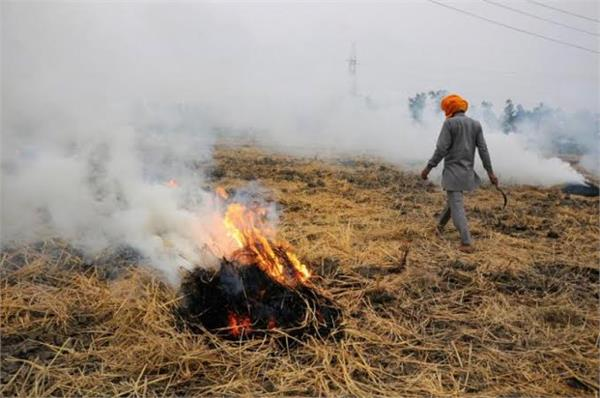 straw not burning farmers compensation plastics jaggery panchayat