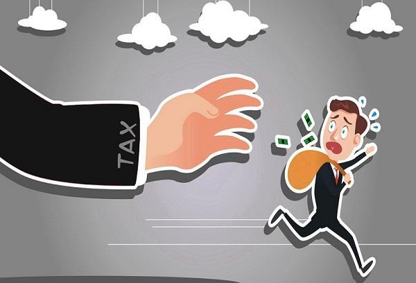 traders and firms evaded taxes