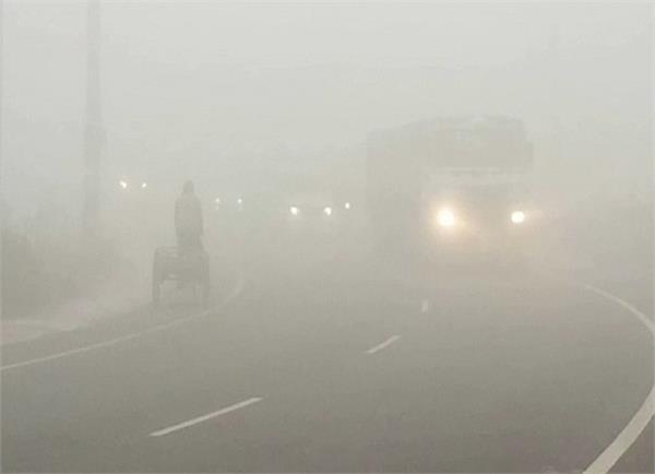 moga dense fog