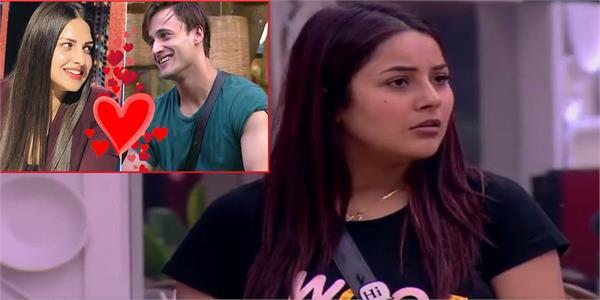 bigg boss 13  asim riaz confesses his love for himanshi khurana