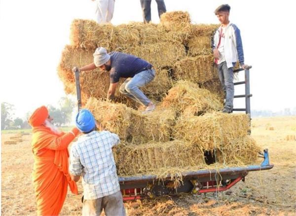 saint seechwall  straw  biomass plant
