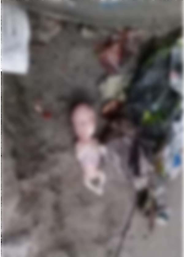jalandhar  fetal recoverd