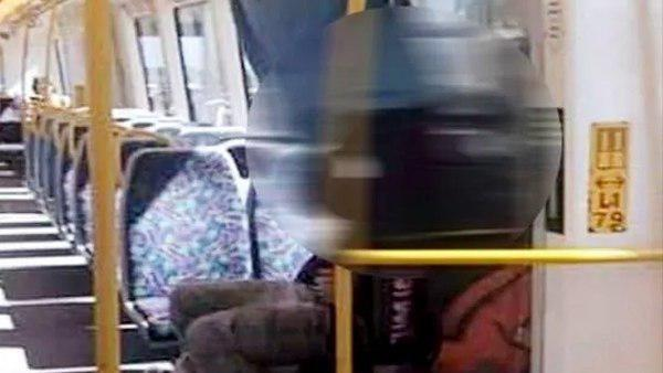 couple in moving train in australia photo goes viral