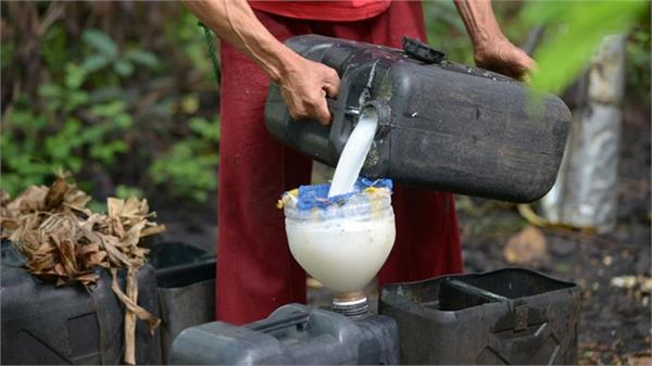 11 die  300 die of drinking coconut wine during christmas party in philippines