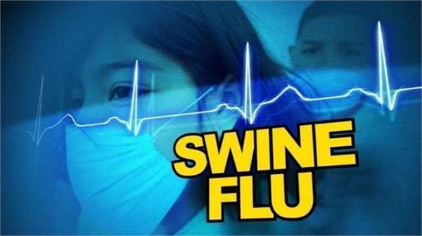 amritsar swine flu poisonous virus