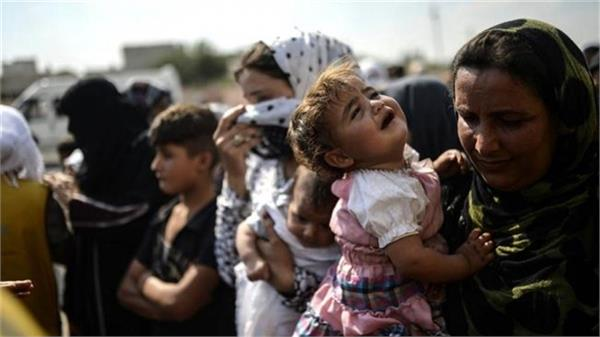 more than 900 refugees return to syria in 24 hours