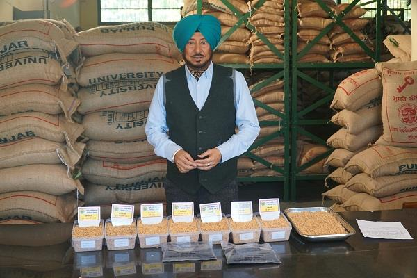 paddy   dr  dhillon