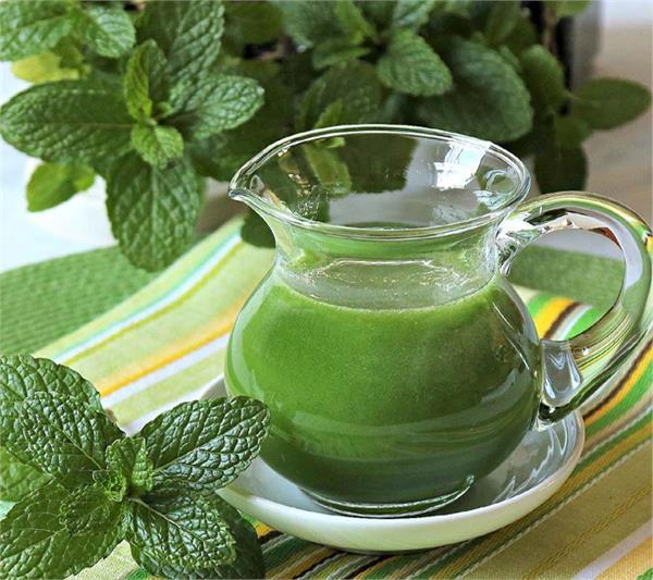 mint benefits health