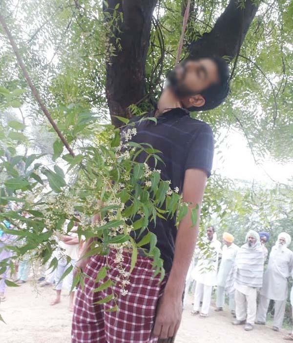 the body of the only son who is hanging with a tree