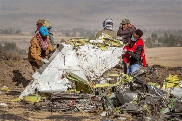bird strike was factor in 737 max crash