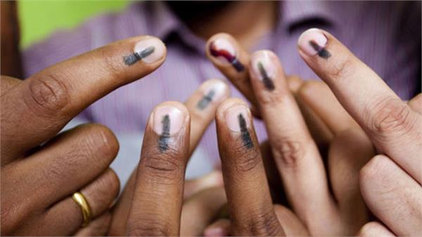 how to vote without voter card in lok sabha elections