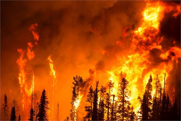 the fires in the us jungle spread over 37 000 acres
