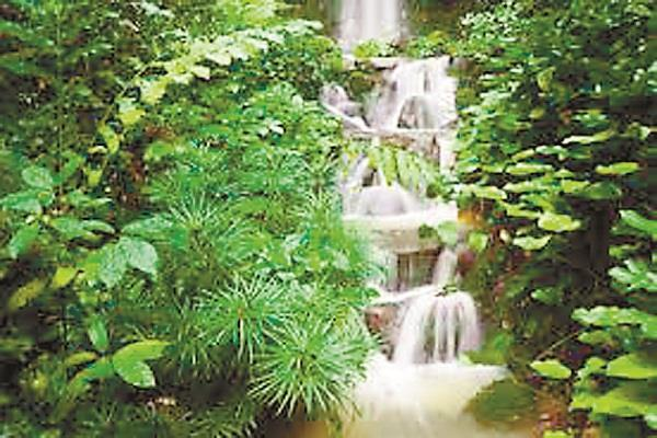 we can meet with the energy and the might of water  living environment
