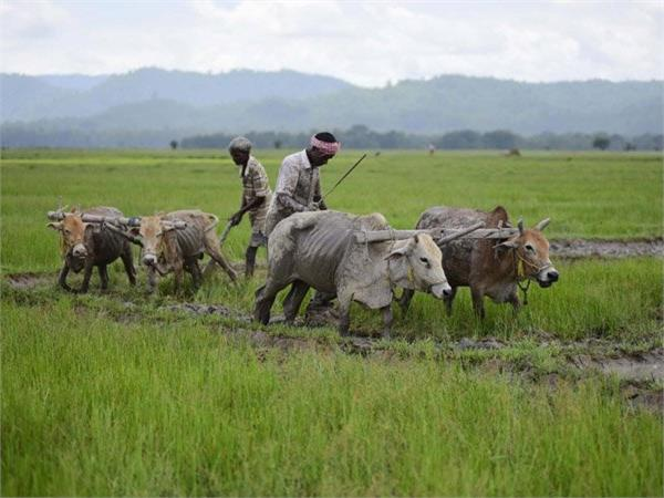 govt to make crop insurance voluntary to all farmers