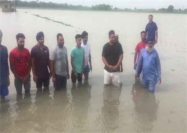 fatehgarh sahib paddy farmers rain