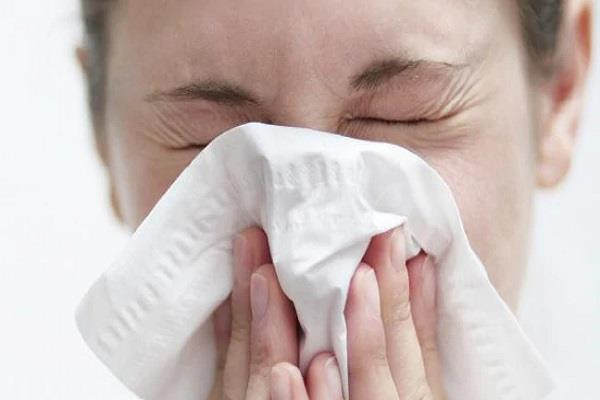 nsw six die from  flu