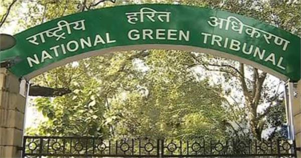ngt raises fine imposed on gammon india  hcc to rs 2 crore each