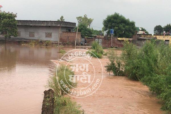 jalandhar  sutlej  flood