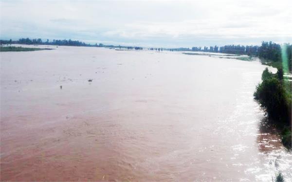 sutlej river  dangers  bhakhra