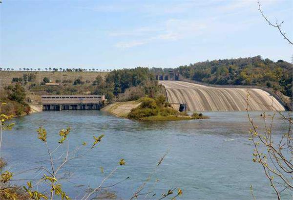 pong dam water