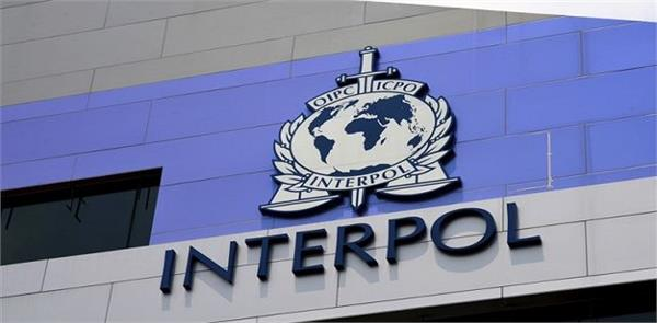what is interpol and what are its functions