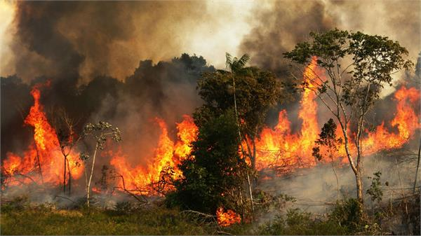 fire in amazon s forests will be included in g 7 s agenda