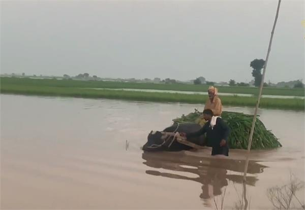 pakistan punjab is also under floods