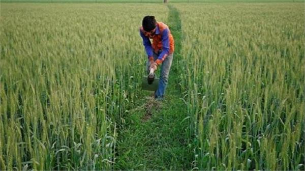 agricultural exports fall
