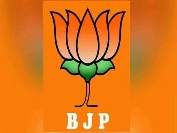 haryana bjp appointed election in charge