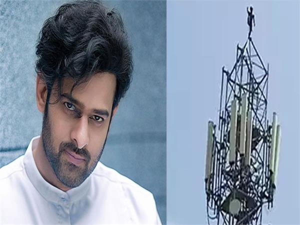 prabhas   fan climbs cellphone tower to demand meeting with saaho star