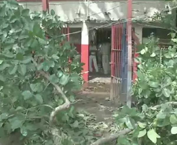 tree fell on a police building