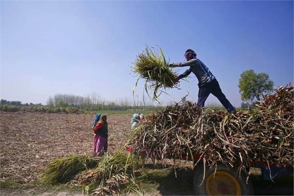government plans to release second tranche of pm kisan