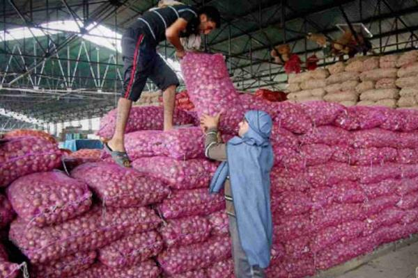 delhi govt to sell onions at rs 23 90 per kg through these shops