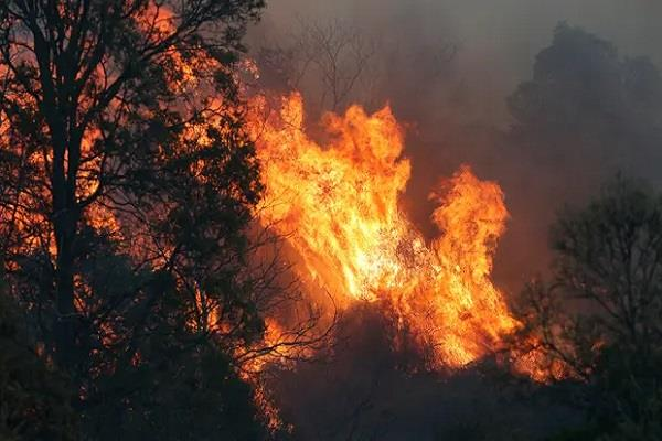 bushfires blazes queensland and nsw