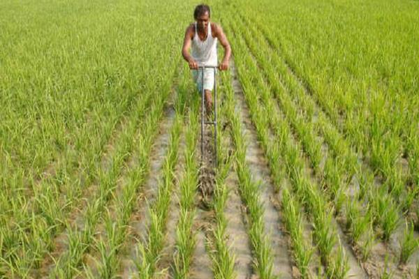 relief to farmers  tds will not deduct more than rs 1 crore in cash payment