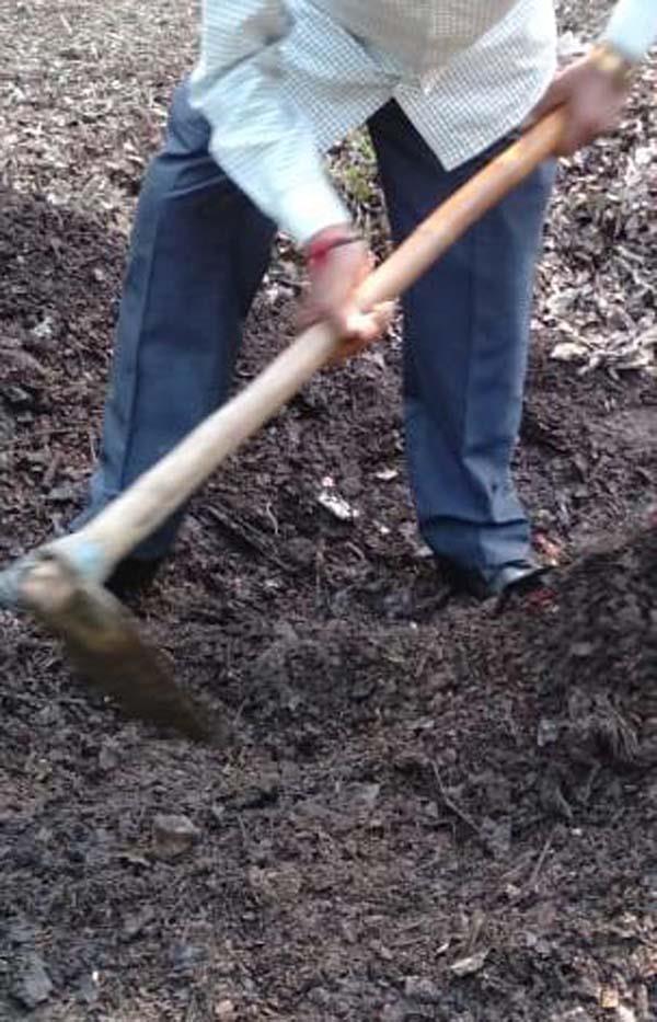 burlton park  fertilizer